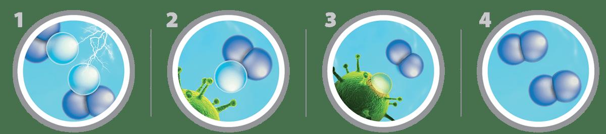 Désinfection à l'ozone